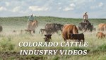 ColoradoVideos
